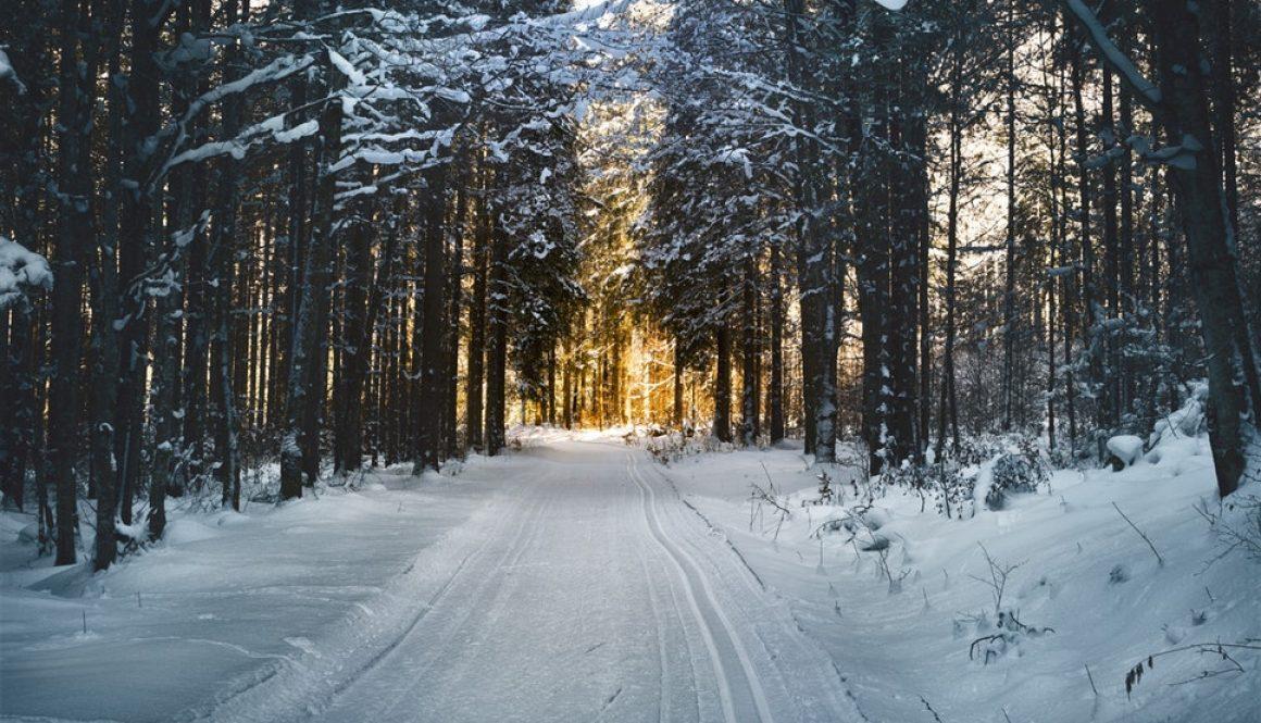 snow landscape way